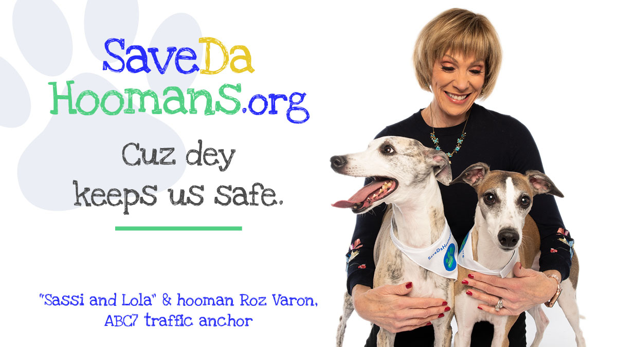 Savedahoomans Social Media ads_Sassi and Lola versions2_TW